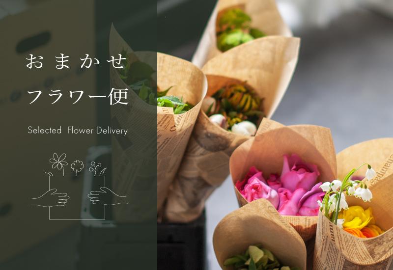 パリスタイルフラワー教室開業 ビジネスの仕組み作りとweb集客で売れるスクールへ 東京 世田谷 KOLME(コルメ)ご自宅にKOLMEセレクトのお花をお届け。おまかせフラワー便はじめます♪