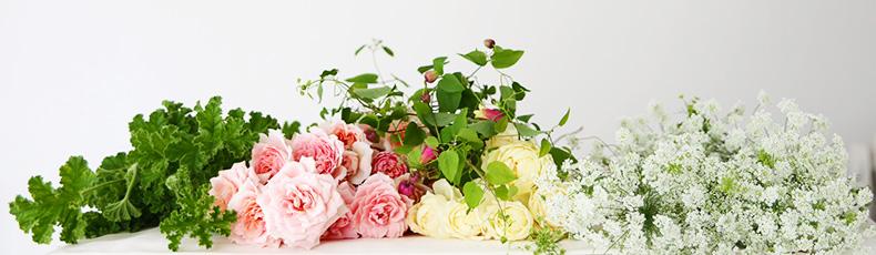 flowerlesson_en_banner