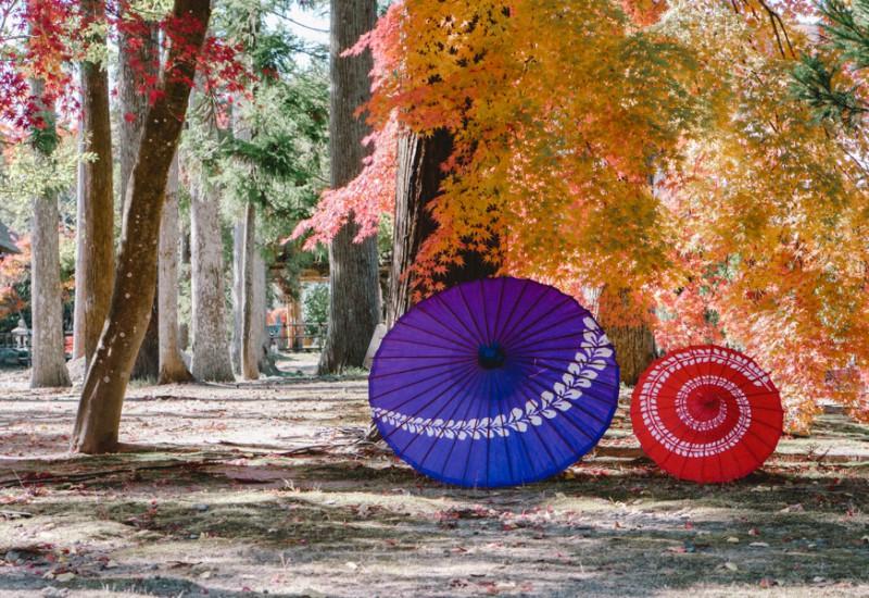 仙台フォト散歩 松島で紅葉めぐり