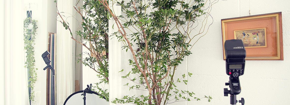 KOLME(コルメ)東京都世田谷区パリスタイルフラワーアレンジメント教室